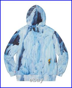 Supreme x The North Face Ice Climb Hoodie Size MEDIUM Order Confirmed