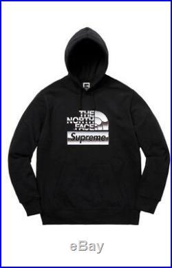 Supreme x The North Face Metallic Box Logo Hoodie Sweatshirt TNF Bag